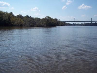 Spotlight on James River Atlantic Sturgeon Habitat Restoration, Virginia