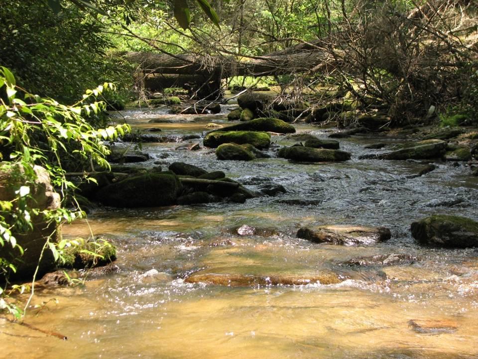 Jocassee Gorges, South Carolina