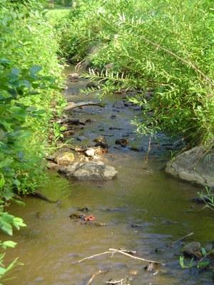 Photo 3 of Garth Run, Virginia