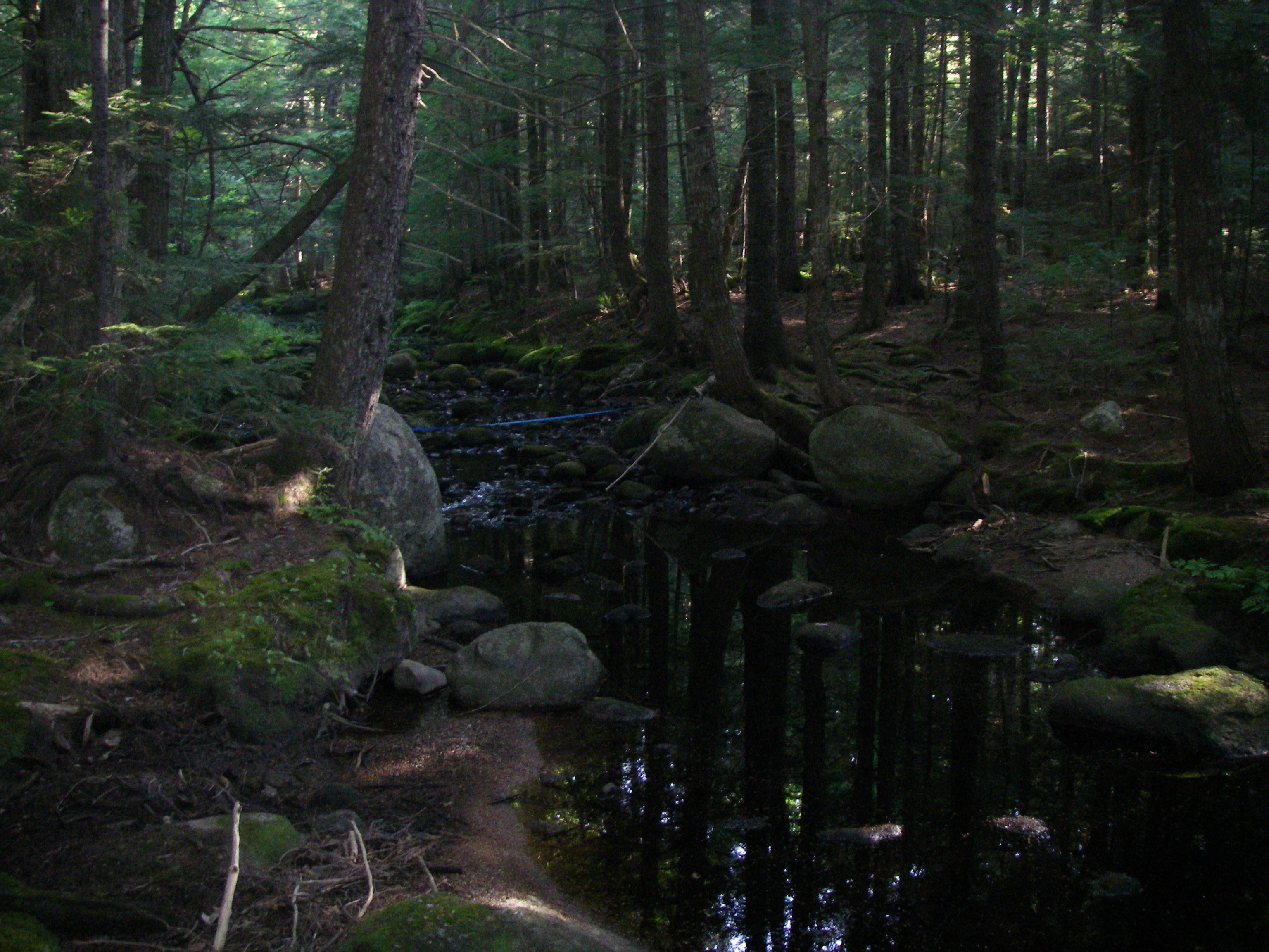 Carloe Brook, Maine