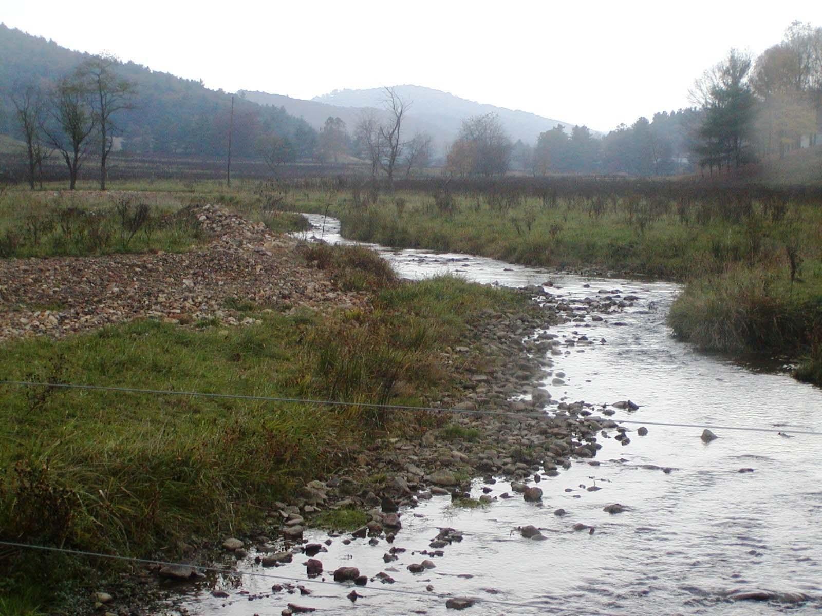 Photo of Whitethorn Creek, West Virginia