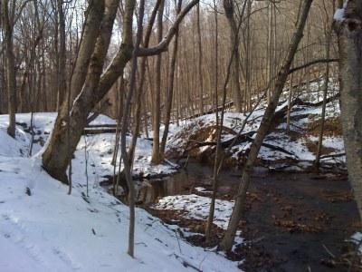 Photo 2 of Frankstown Branch, PA