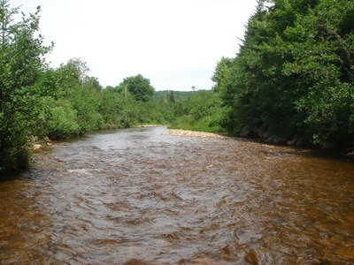 Photo of Nash Stream, Coos County, NH