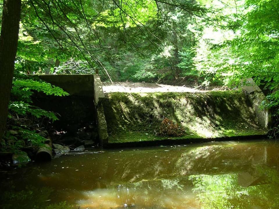 Dam on Wetmore Run