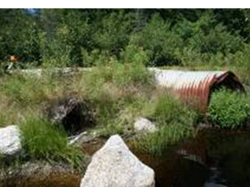 Photo of the Upstream End of the Culvert on WB Machias in Maine