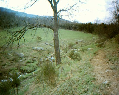 Photo of Smith Creek Headwaters Restoration, Viginia