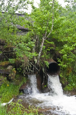 Photo of Beaver Creek Culverts