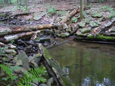 Photo 1 of Wallacks Branch