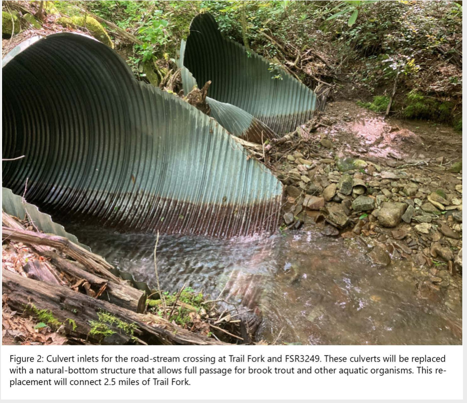 EBTJV's 2021 habitat projects to connect over 6 stream miles, reduce sedimentation, improve brook trout resiliency to climate change