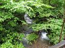 Culvert Replacement and Stream Restoration in Wolfden Run, Garrett County, Maryland