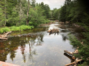 Restoration of Riverine Process and Habitat Suitability In the Upper Narraguagus River and Northern Stream Focus Areas (Maine)