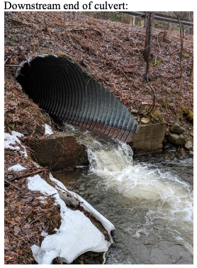 outlet (downstream) view of Lockwood culvert showing perched outlet.